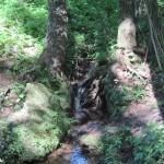 Источник живой воды