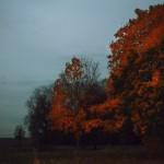 Осенние сумерки - начало