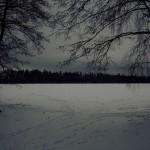 Зимнее поле, снег